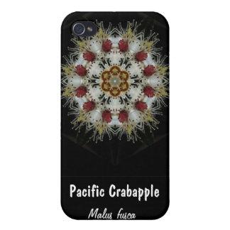 El cangrejo Apple florece, Crabapple pacífico, Mal iPhone 4/4S Funda