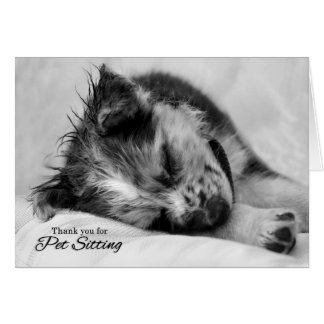 El canguro del mascota le agradece perro de tarjeta de felicitación