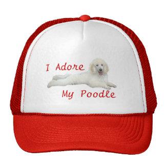 El caniche I adora el gorra