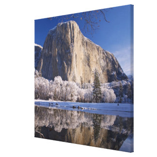 El Capitan reflects into the Merced River in 2 Canvas Print