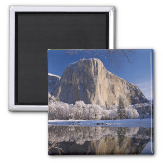 El Capitan reflects into the Merced River in 2 Magnet