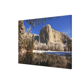 El Capitan reflects into the Merced River in Canvas Print