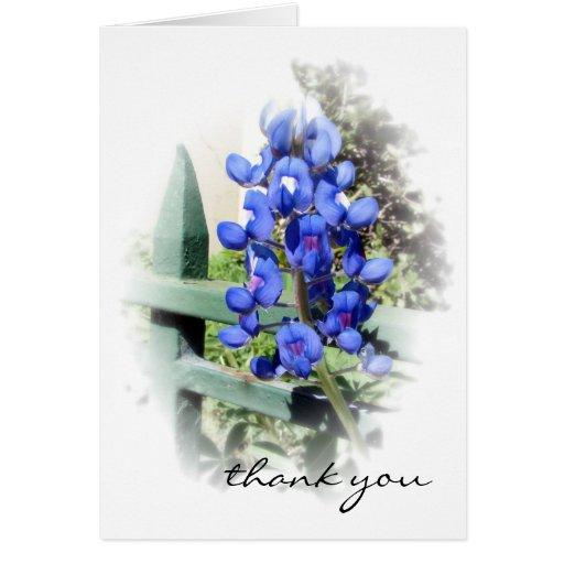 El capo azul le agradece tarjeta de nota