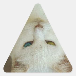 El carámbano de la esperanza pasada calcomanía de triangulo