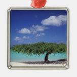 El Caribe, Aruba. Playa de Eagle Adorno Navideño Cuadrado De Metal