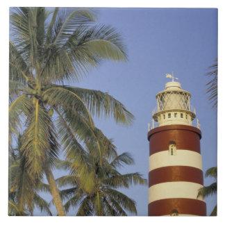 El Caribe, Bahamas, Ábaco, isleta del codo. Hopeto Azulejo Cuadrado Grande