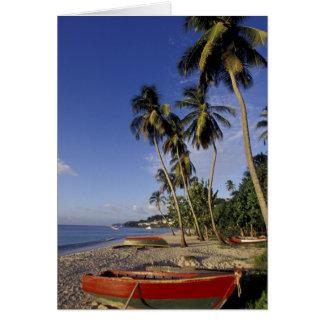 El CARIBE Grenada San Jorge barcos en la palma Felicitacion