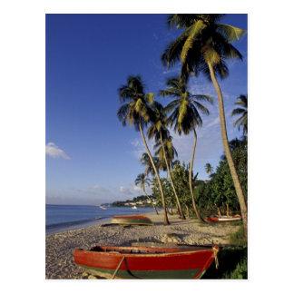 El CARIBE Grenada San Jorge barcos en la palma Postal