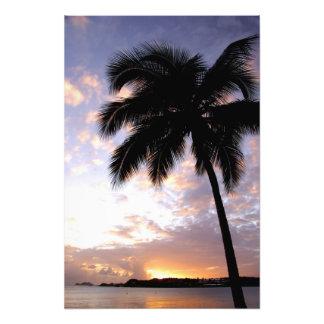 El Caribe, Islas Vírgenes de los E.E.U.U., St Thom Arte Fotográfico