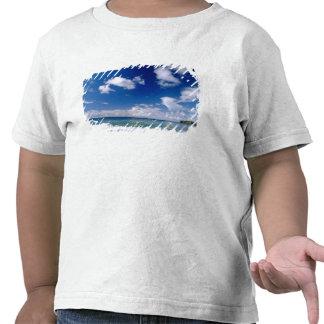 El Caribe, pocas Antillas, las Antillas, 5 Camisetas