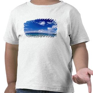 El Caribe, pocas Antillas, las Antillas, Camisetas