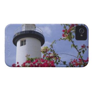 El Caribe, Puerto Rico, isla de Viegues. iPhone 4 Coberturas