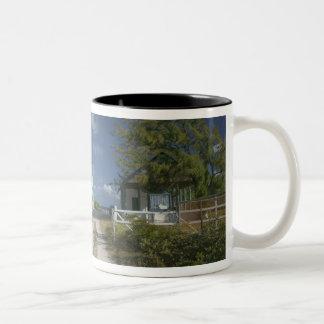 El Caribe, TURCOS y CAICOS, isla magnífica del Taza De Dos Tonos