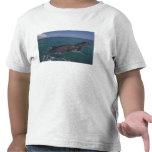 El Caribe, Tursiops 2 de los delfínes de Bottlenos Camisetas
