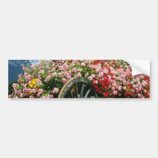 El carro rojo de la flor, La Clusaz, Francia flore Pegatina De Parachoque