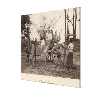 El carro tiró por dos bueyes en Mandalay, Birmania Lona Estirada Galerías
