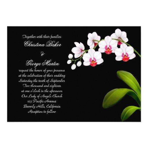 El casarse blanco de las orquídeas del Phalaenopsi