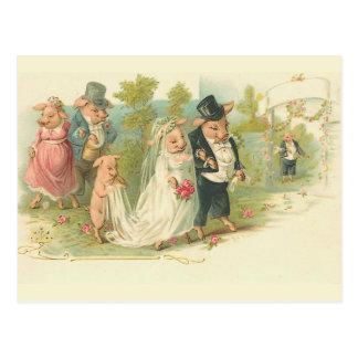 El casarse de los cerdos del vintage tarjeta postal