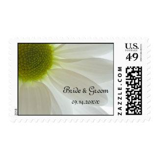 El casarse de los pétalos de la margarita blanca sellos postales