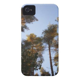 El caso 4 y 4s del iPhone del árbol Case-Mate iPhone 4 Coberturas