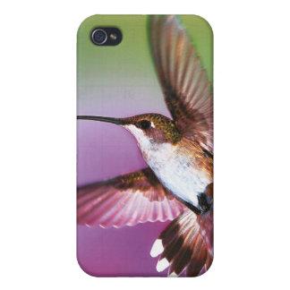 "El caso de B iphone4 ""acaricia"" el colibrí iPhone 4 Cobertura"