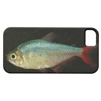el caso del iPhone 5 con rojo ató tetra pescados Funda Para iPhone SE/5/5s