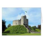 El castillo de Cardiff guarda Tarjeta De Felicitación