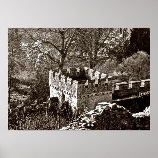 El castillo guarda V Posters