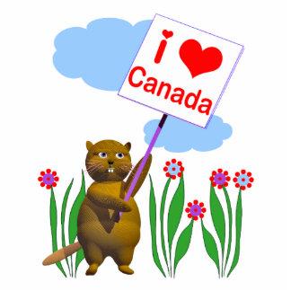 El castor canadiense ama Canadá Fotoescultura Vertical