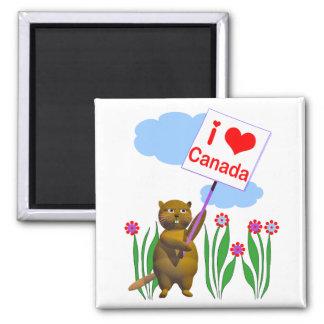El castor canadiense ama Canadá Imán Cuadrado