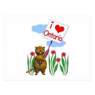 El castor canadiense ama Ontario Tarjetas Postales