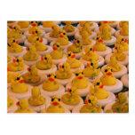 El caucho amarillo fresco Ducks la postal divertid