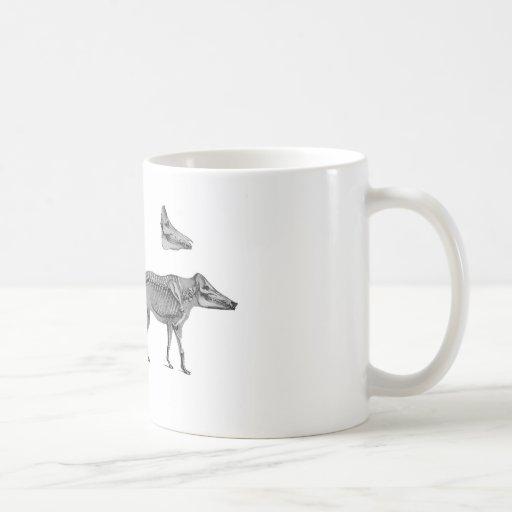 El cazador - perro esquelético con el cazador del  tazas
