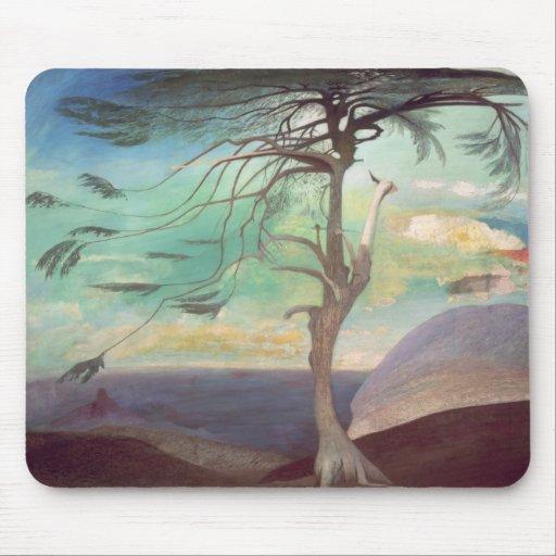 El Cedar solitario, 1907 Tapetes De Ratón