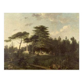 El cedro de Líbano en el Jardin des Plantes Postales