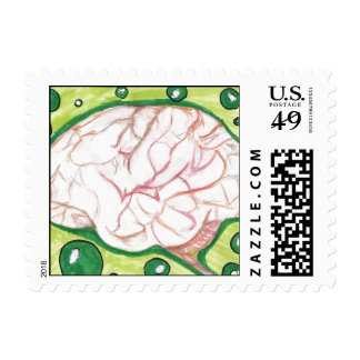 El cerebro burbujea sello