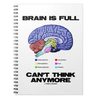 El cerebro es lleno no puede pensar más (la anatom libretas