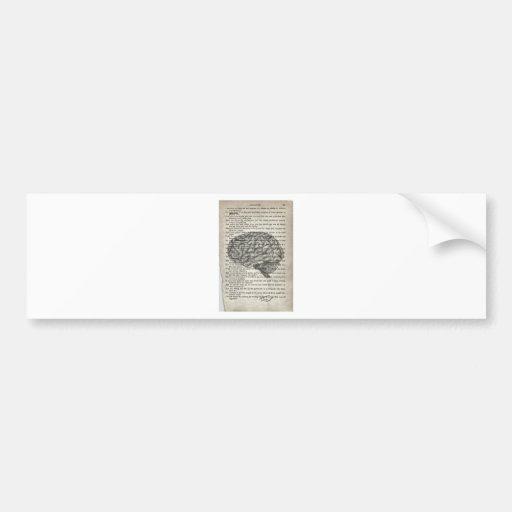 el cerebro poderoso etiqueta de parachoque