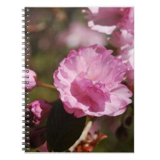 El cerezo florece cuaderno