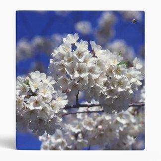 """El cerezo florece las flores carpeta 1"""""""