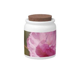 El cerezo florece tarro del caramelo plato para caramelo