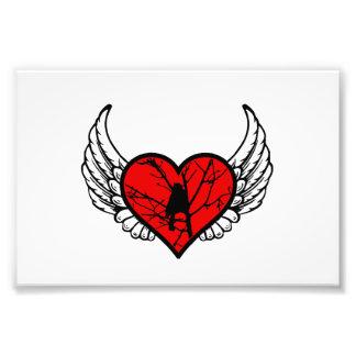 El Chickadee del ángel, los pájaros de observación Fotografías