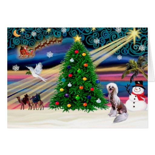 El chino mágico del navidad Crested 4 Tarjeta De Felicitación