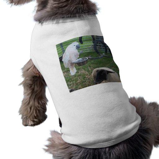 El chirrido y las ovejas playera sin mangas para perro