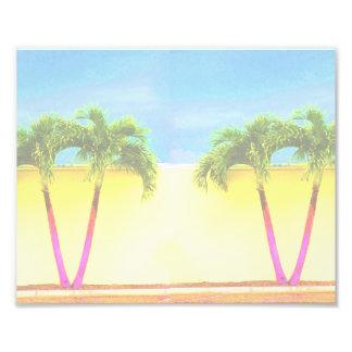 El cielo retro de dos árboles de la palma se desco fotografías