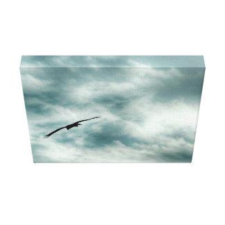 El cielo temático, un salto del pájaro en aire lona estirada galerías