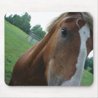 El cierre del ojo del caballo encima de ideas tapetes de raton