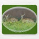 El ciervo Blanco-Atado adula Mousepad Alfombrilla De Ratón
