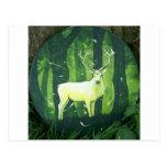 El ciervo blanco postal