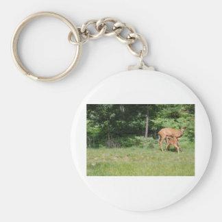 El ciervo de la madre le alimenta bebés llavero personalizado